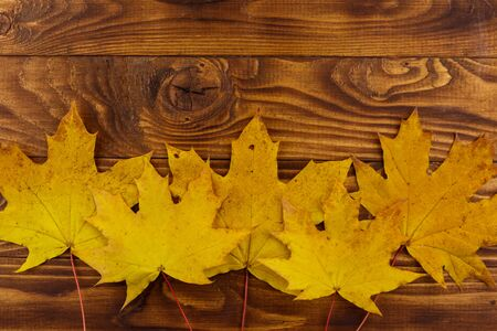 Autumn maple leaves on wooden background. Top view, copy space