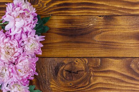 Beautiful chrysanthemums on wooden background. Top view, copy space