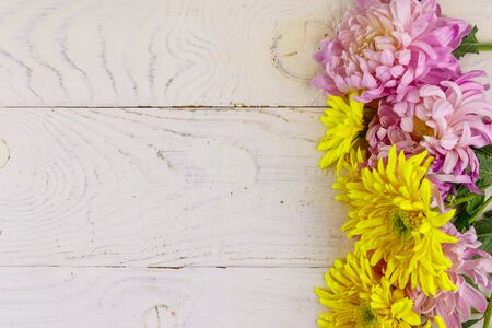 Beautiful chrysanthemums on white wooden background. Top view, copy space