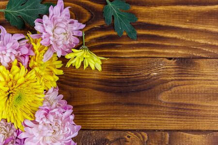 Beautiful chrysanthemums on wooden background. Top view, copy space Stock Photo - 130815939