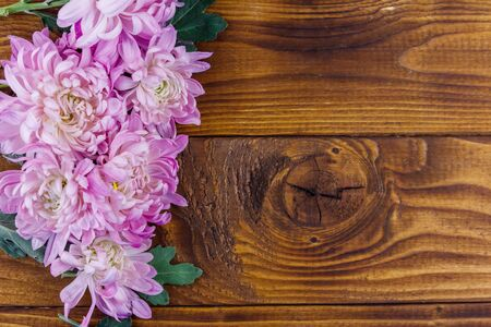 Beautiful chrysanthemums on wooden background. Top view, copy space Stock Photo - 130815940