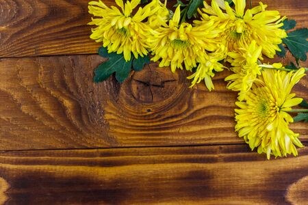 Yellow chrysanthemums on wooden background. Top view, copy space Stock Photo - 130815942