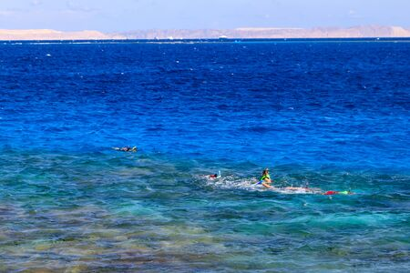 Group of people snorkeling over the coral reef in the Red Sea