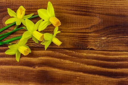 Yellow daffodil flowers on wooden background. Greeting card for Valentines Day, Womens Day and Mothers Day. Top view, copy space