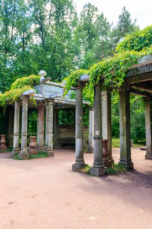 Old pergola-veranda 1865 in the Italian style twined with wild grapes at the Catherine Park in Tsarskoye Selo, Pushkin, Russia
