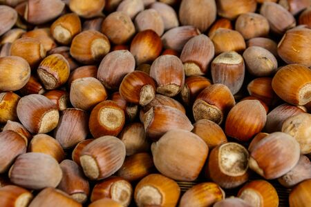 Food background of the whole hazelnuts