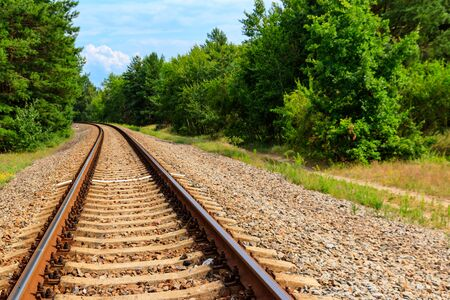 Railroad track through a green pine forest Banque d'images