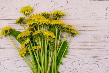 Yellow dandelion flowers on white wooden background. Top view 写真素材 - 134842357