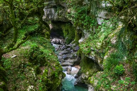 Martvili canyon in Georgia. Beautiful natural canyon with view of the mountain river Abasha 写真素材