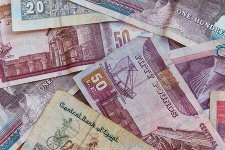 Background of different egyptian pounds banknotes. Egyptian currency 写真素材