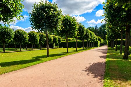 Formal garden in Catherine Park in Tsarskoye Selo, Pushkin, Russia