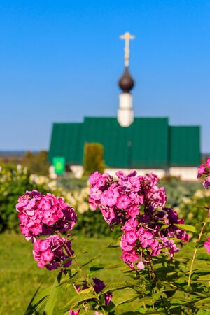 Pink phlox in a garden. Orthodox church on a background