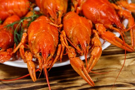 Boiled crayfish in plate on wooden table