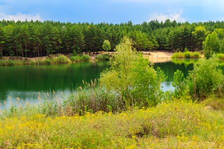 View of a beautiful lake in a pine forest at summer Archivio Fotografico