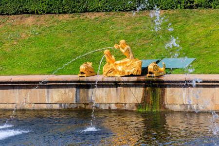 Gilded fountain in Lower park of Peterhof in St. Petersburg, Russia
