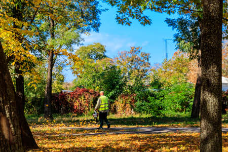 Worker uses a blower to clear fallen autumn leaves in city park