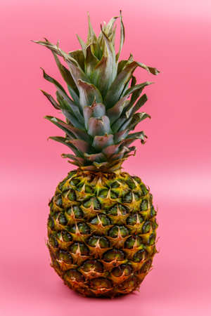 One whole pineapple on pink background 写真素材