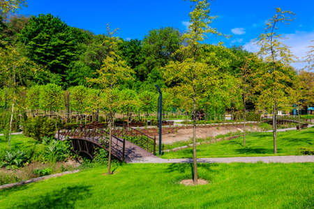 Beautiful view of the city park with arched footbridge across small river and young trees 写真素材