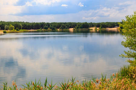 View of a beautiful lake in a pine forest at summer