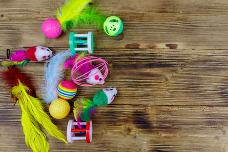 Set of toys for cat on wooden background. Top view, copy space