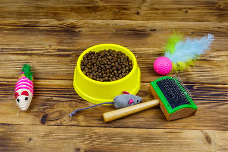 Dry cat food in bowl, cat toys and pet slicker brush on wooden background. Pet care concept