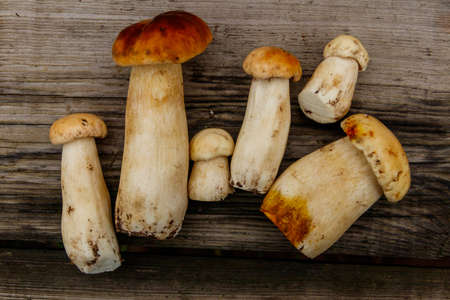 Freshly picked porcini mushrooms on rustic wooden table. Top view 免版税图像