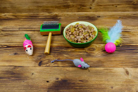 Canned cat food in bowl, cat toys and pet slicker brush on wooden background. Pet care concept