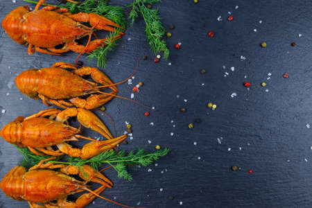 Red boiled crayfish with dill and spices on black slate background. Top view