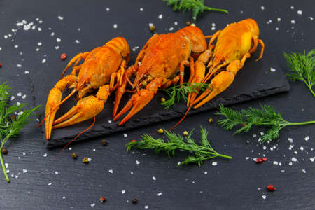 Red boiled crayfish with dill and spices on black slate background 免版税图像