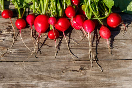 Fresh red radish with leaves on rustic wooden table. Top view