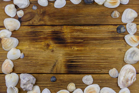 Sea shells on rustic wooden background. Top view, copy space