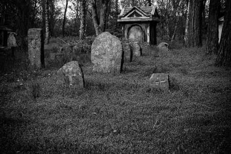 Old stone gravestones in the old abandoned cemetery. Black and white tone 免版税图像