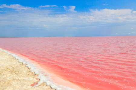 View of the pink salty Syvash lake in Kherson region, Ukraine