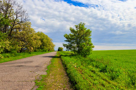 Summer landscape with country asphalt road and blue sky