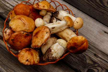 Freshly picked forest mushrooms in basket on rustic wooden table. Top view Фото со стока