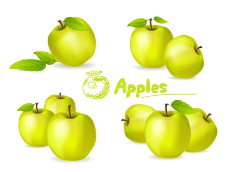 green apples: Set of green apples Vector