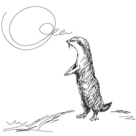 loutre: Croquis de petite asiatique Vector loutre griffes Illustration