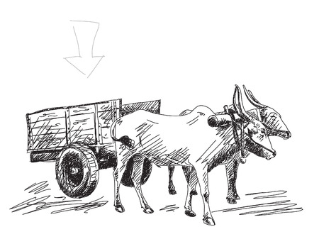 carries: Cow carries a cart Hand drawn