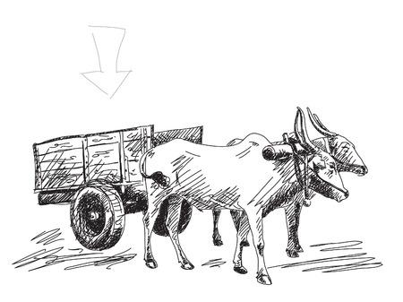 hand cart: Vaca lleva un carrito Dibujado a mano Vectores
