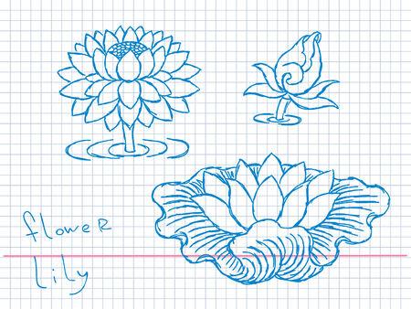 Hand drawn lotus flowers Vector Vector