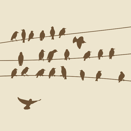 flock of birds: birds on wires Illustration