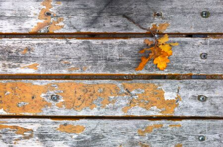Autumn yellow oak leaves over old wooden background with copy space Banco de Imagens - 127345338