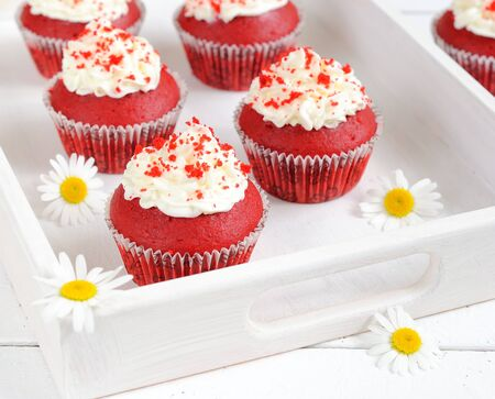 Red velvet cupcakes Stock Photo - 13678498