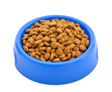 Cat food in a bowl Stock Photo - 14234054