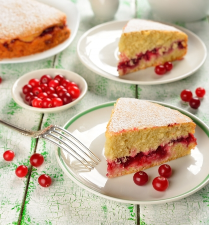 Cranberry cake on the white table Stock Photo - 16802525