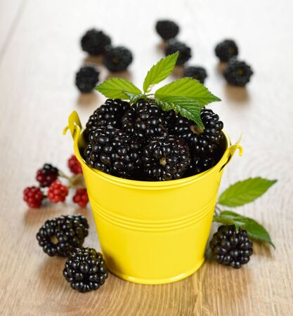Blackberries in a yellow bucket Stock Photo