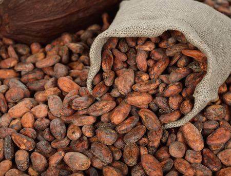 cacao beans: Los granos de cacao en una bolsa en un fondo marr�n Foto de archivo