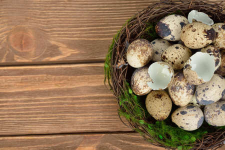 quail nest: Quail eggs in a nest on a brown background