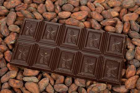 cacao beans: Chocolate and cocoa beans