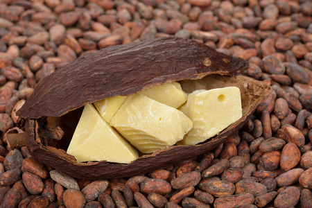 Natural cocoa butter and cocoa beans Standard-Bild